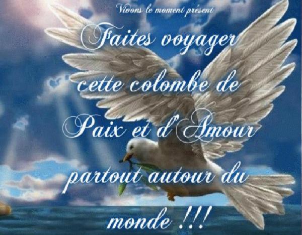 Préférence Courageuse petite colombe porte la paix dans le monde entier  BU26