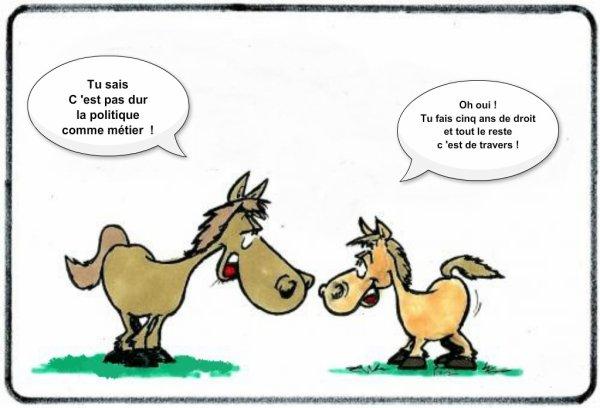 images humour  - Page 5 3291121108_1_3_dXfVdsSx