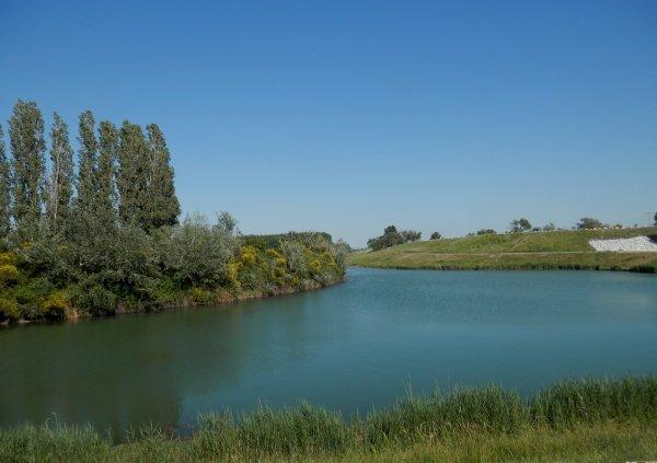 Promenade au bord du Rhône !