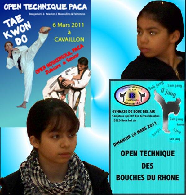 Opens Techniques  - Saison 2010-2011
