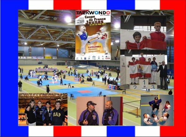 Coupe de France Benjamins - Minimes  - Saison 2010-2011