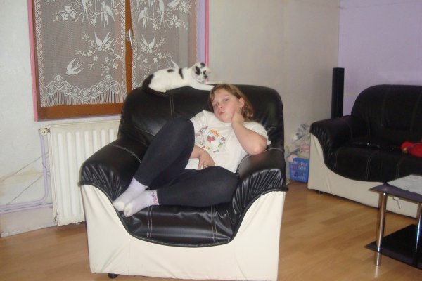 pose fauteuil