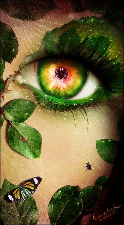 tes yeux