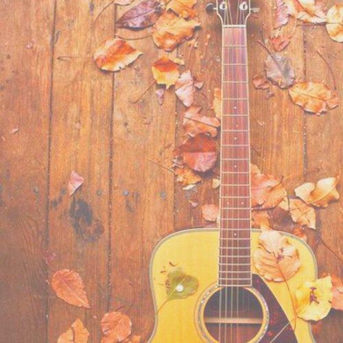 Un ami est quelqu'un qui sait la chanson à votre coeur et peut le chanter de nouveau à toi quand vous avez oublié les mots