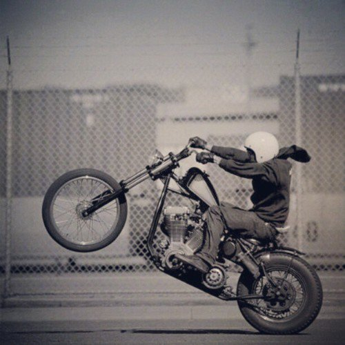 suite motos