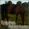 Equine-Adventures