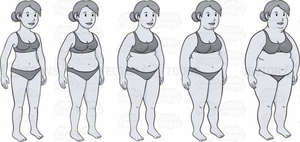 Evolution par jour/semaine/mois
