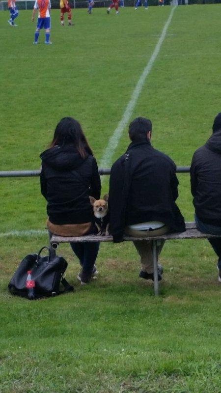 27/09/15: FC Lonay Sport vs FC Gland IIA. 5-0 (2-0)