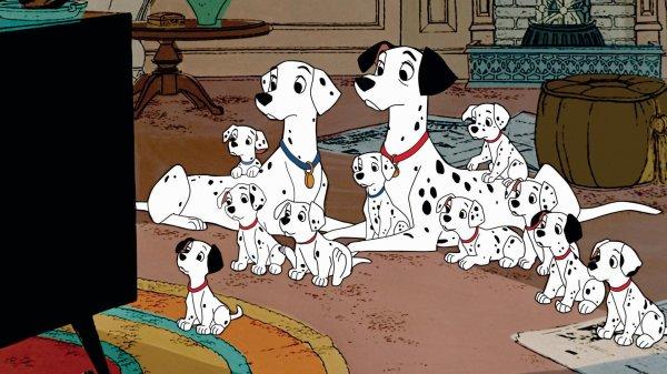 | 101 Dalmatians |