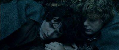 Frodo Baggins & Sam Gamgie