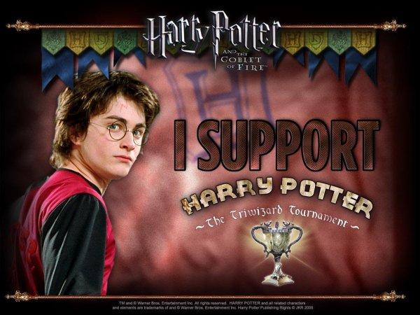 Souvenirs n°3 : Avant-première d'Harry Potter et la Coupe de Feu