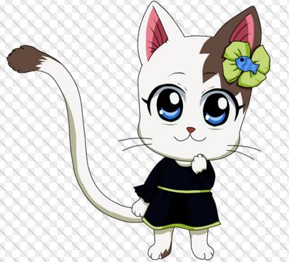 Présentation des personnages pour la fic Fairy Tail
