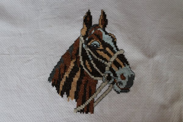 cheval pour ma fille