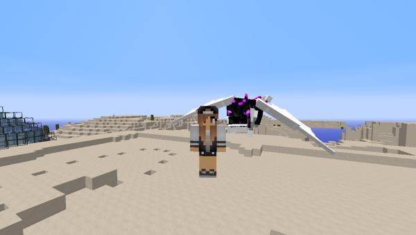Quelques screens sur minecraft =)