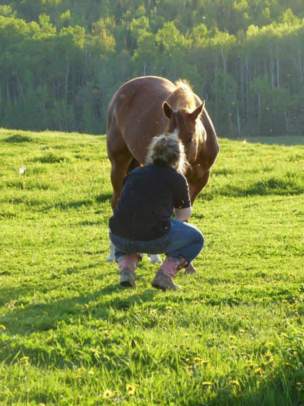 Le cheval court, le cavalier se vante