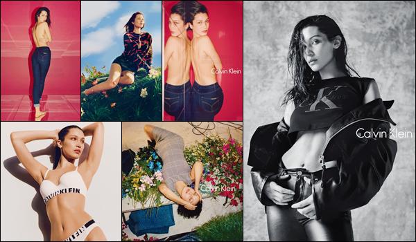 Bella Hadid prend la pose pour la marque « Calvin Klein »  d'automne 2016 !