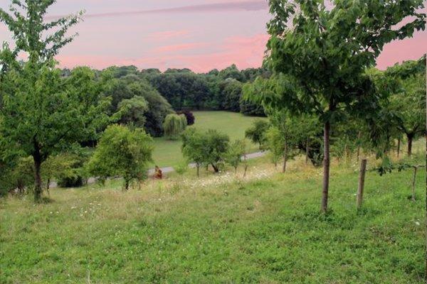 Un parc comme je voudrais tellement en voir partout