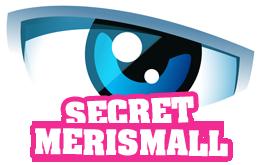 Secret Story - Musique remix - Merismall.skyrock.com (2011)