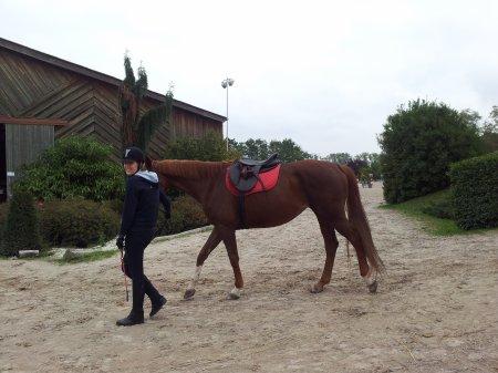 Amira et moi, 10.10.15