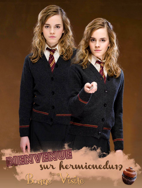 Bienvenue Sur hermionedu19 !