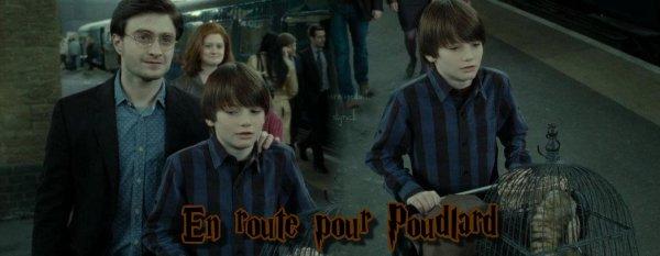 Ma Fiction sur les PotterKids