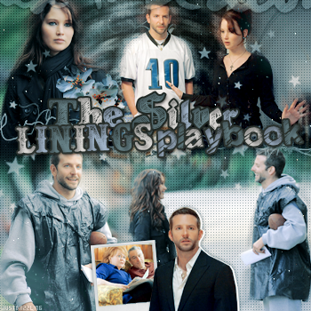 ____________________________ Silver Linings Playbook / Happiness Therapy _____________________créa ~ déco