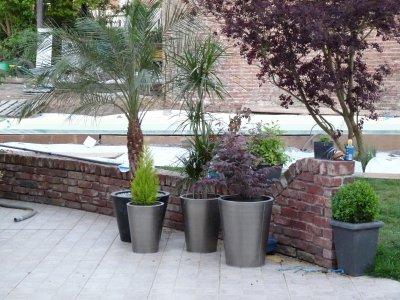 Nouveau pot pour le palmier construction de notre piscine - Pot pour palmier ...