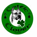 Photo de CelticCloverKennel