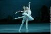 danse-en-rytme