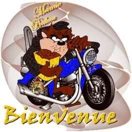 Sur un blog de motocross