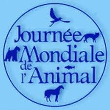 infos blog /  31 aout 2011
