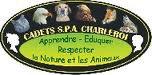 semaine du 03/10/11 au 09/10/11 - semaine spécial chats dériére les cage de la spa de charleroi