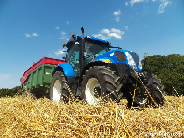 Moisson 2012 ( Fendt 5250 L AL et New holland T 6050 avec Gyrax 140 )