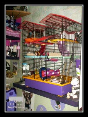 Namy & Birdy (2)