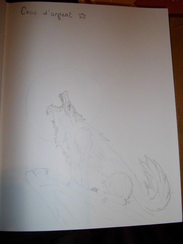 Les dessins de ma p'tiite Femme !