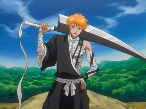 description de ichigo le shinigami