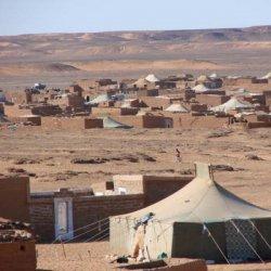 El Gobierno vasco regala 200.000 euros para tres campamentos saharauis
