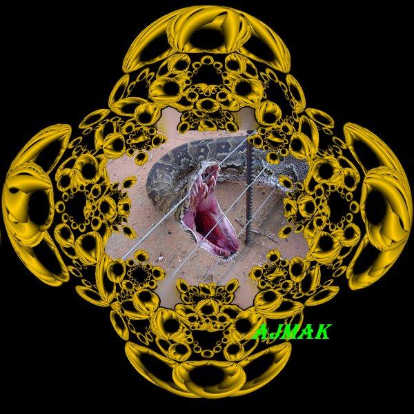 serpent et vide
