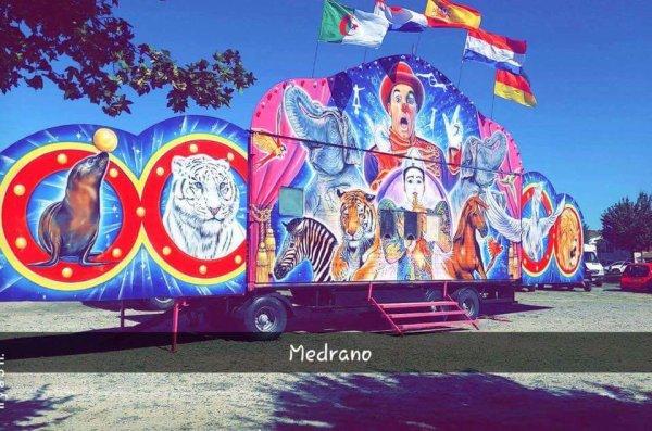 nouvelle caisse cirque medrano crédit vive le cirque