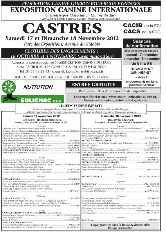 Exposition Internationale de Castres