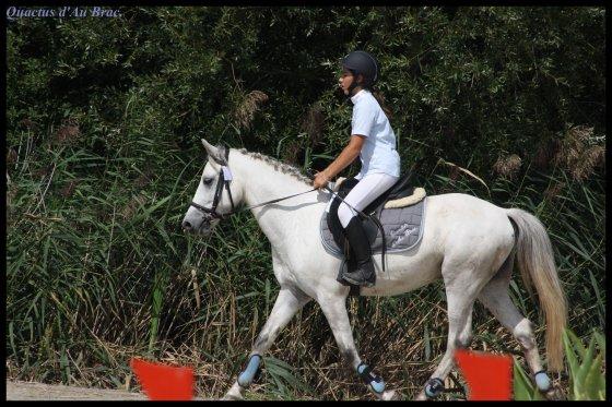 Retour du Sologn' Pony et de notre semaine de vacances en Vendée.