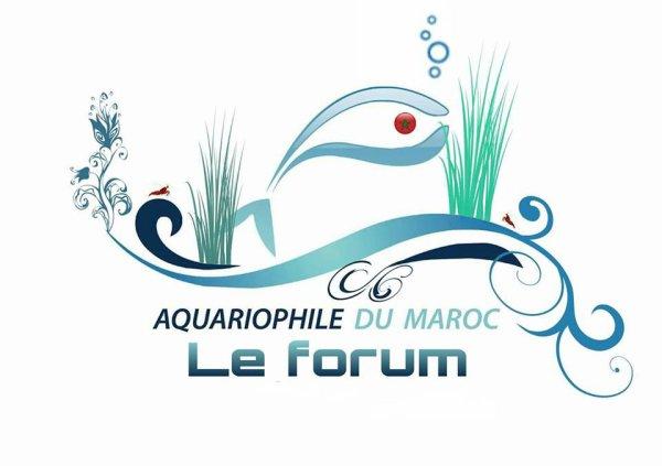 aquariumouad.forumotion