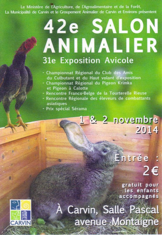 EXPOSITION AVICOLE de CARVIN (62)