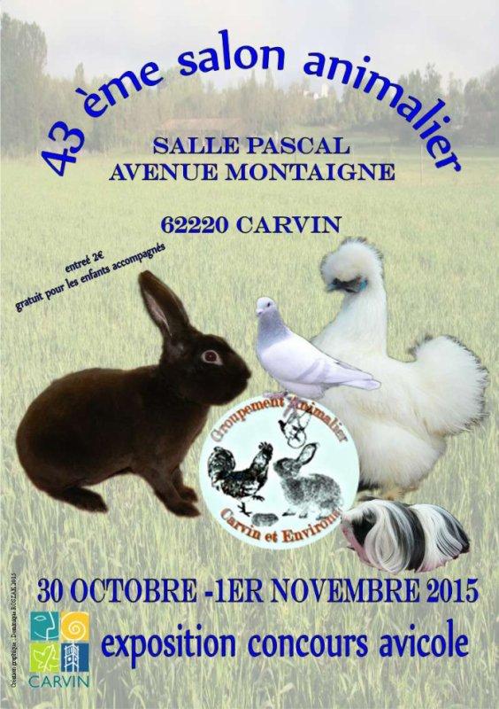Affiche de l'expo de CARVIN (62)