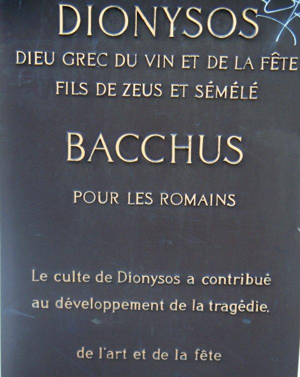 DIONYSOS_Montpellier
