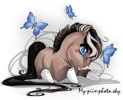 Sprite f0rever ♥♥♥ I love horses                     mi àngel...