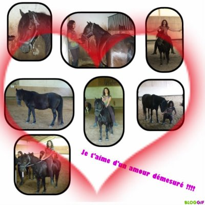 rien a dire sauf que je t'aime de tout mon coeur !!!!