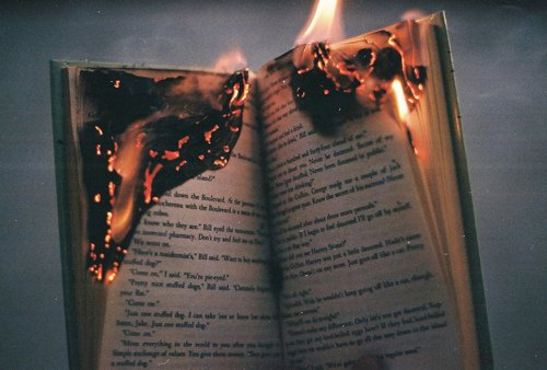 """""""Les pires livres font les meilleurs feux."""" Wanheeda"""