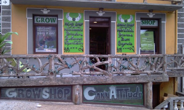 dingcustom la boutique cannattitude