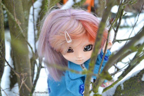 Veronica dans la neige :3